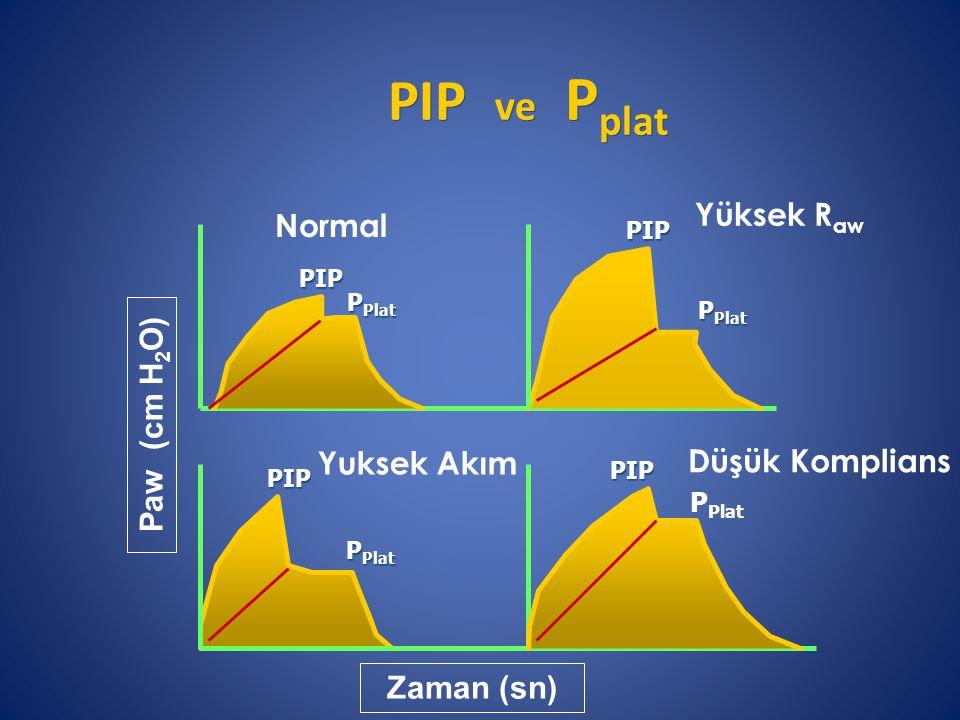 PIP ve Pplat Yüksek Raw Normal Paw (cm H2O) Yuksek Akım