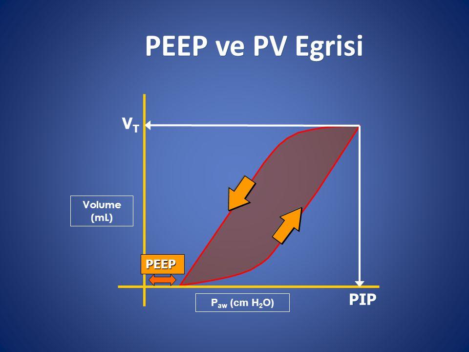 PEEP ve PV Egrisi VT PIP Volume (mL) PEEP Paw (cm H2O)