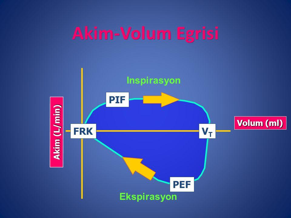 Akim-Volum Egrisi Inspirasyon PIF FRK VT PEF Ekspirasyon Akim (L/min)