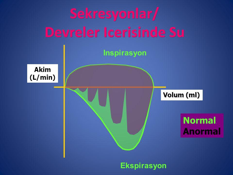 Sekresyonlar/ Devreler Icerisinde Su
