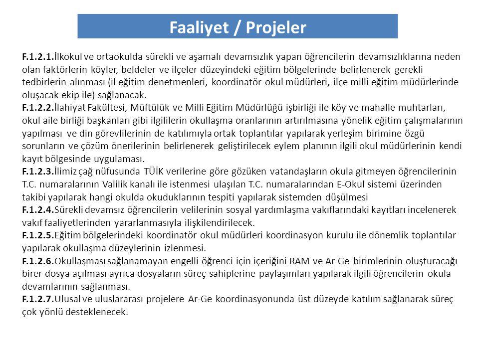 Faaliyet / Projeler