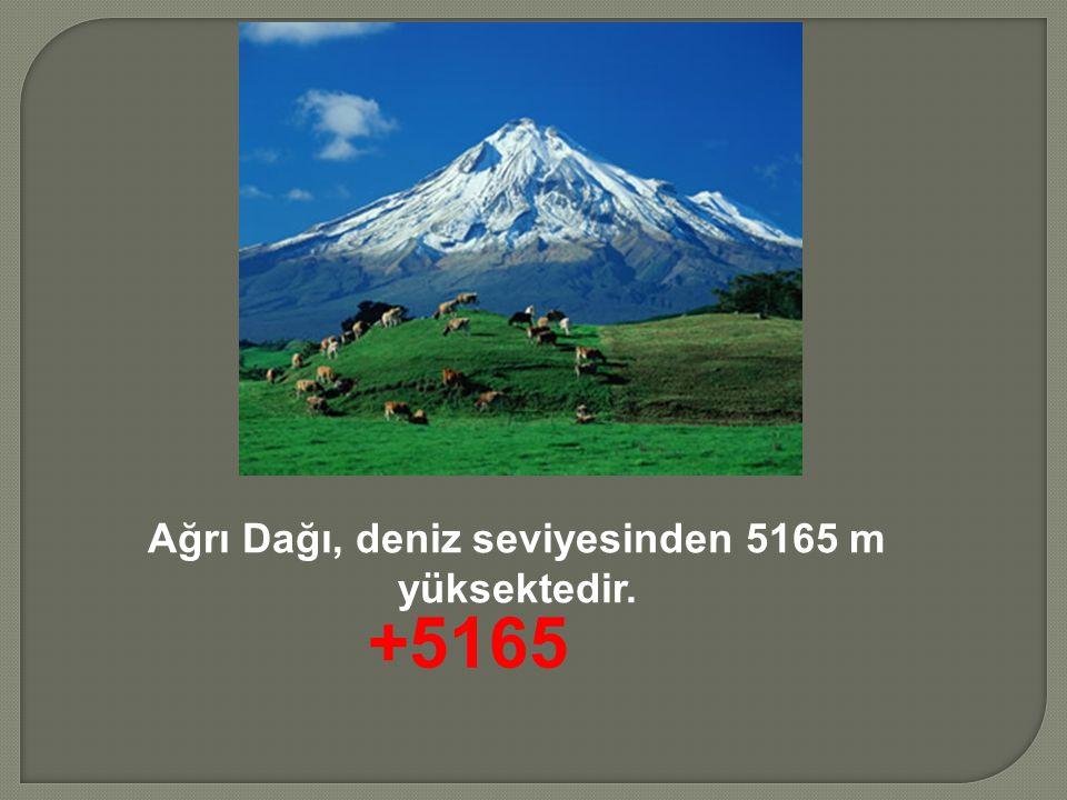 Ağrı Dağı, deniz seviyesinden 5165 m yüksektedir.