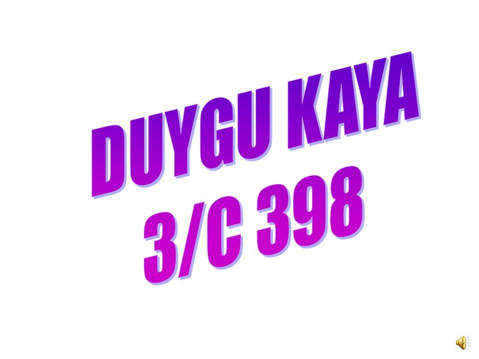 DUYGU KAYA 3/C 398