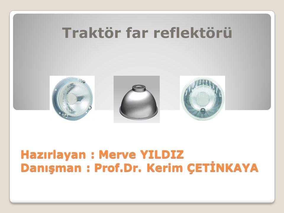 Hazırlayan : Merve YILDIZ Danışman : Prof.Dr. Kerim ÇETİNKAYA
