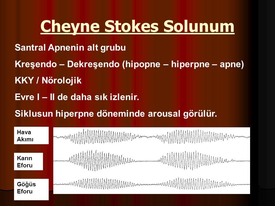 Cheyne Stokes Solunum Santral Apnenin alt grubu