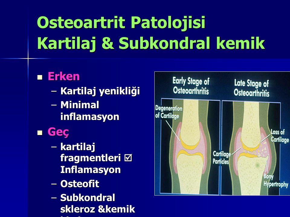 Osteoartrit Patolojisi Kartilaj & Subkondral kemik