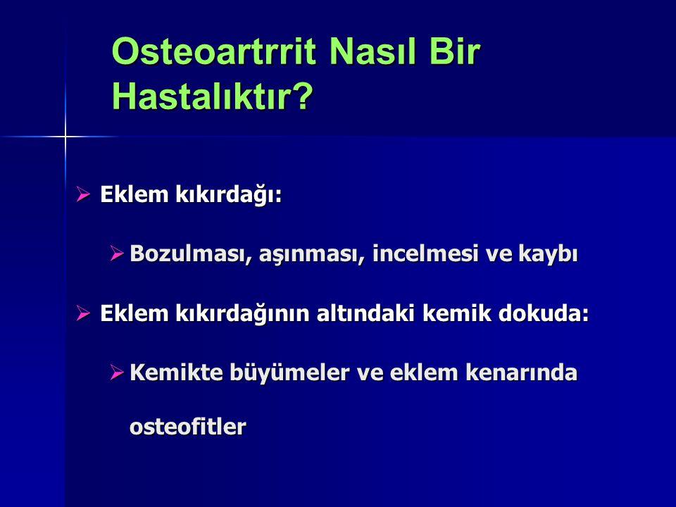 Osteoartrrit Nasıl Bir Hastalıktır
