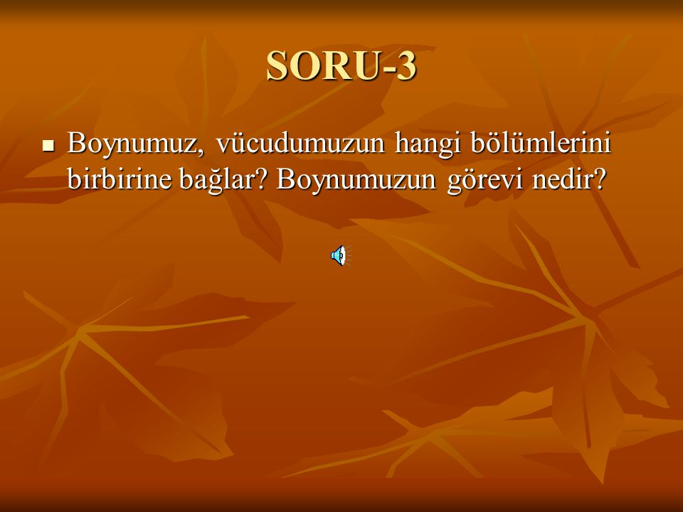 SORU-3 Boynumuz, vücudumuzun hangi bölümlerini birbirine bağlar Boynumuzun görevi nedir