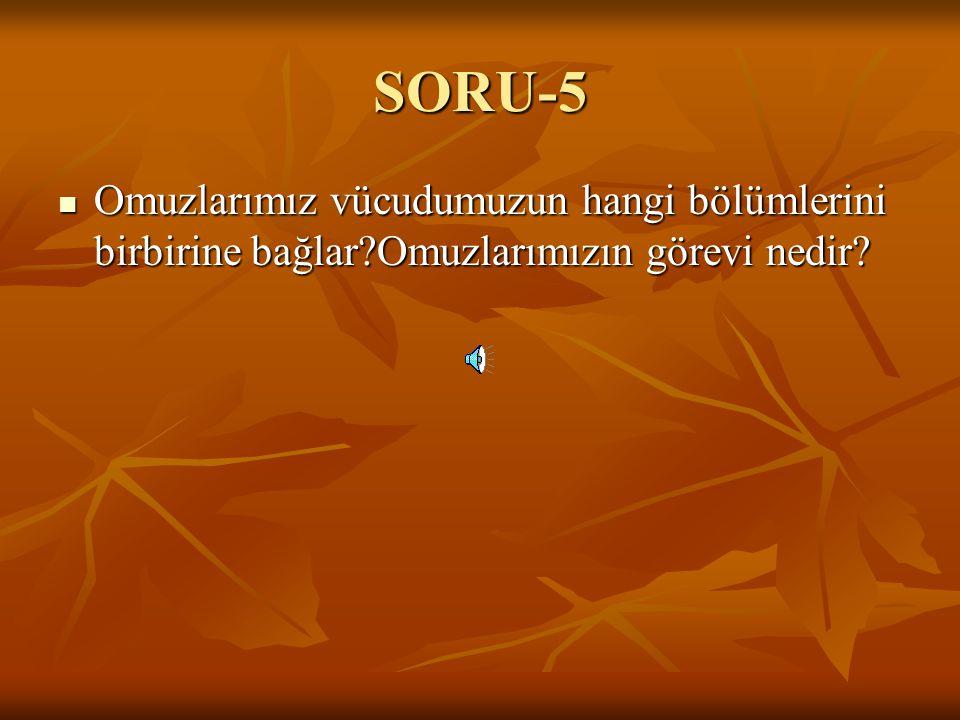 SORU-5 Omuzlarımız vücudumuzun hangi bölümlerini birbirine bağlar Omuzlarımızın görevi nedir