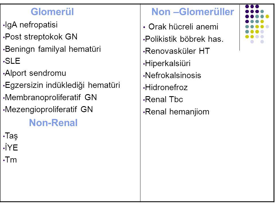 Glomerül Non –Glomerüller Orak hücreli anemi IgA nefropatisi