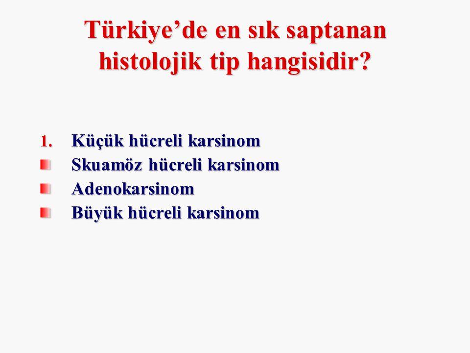 Türkiye'de en sık saptanan histolojik tip hangisidir
