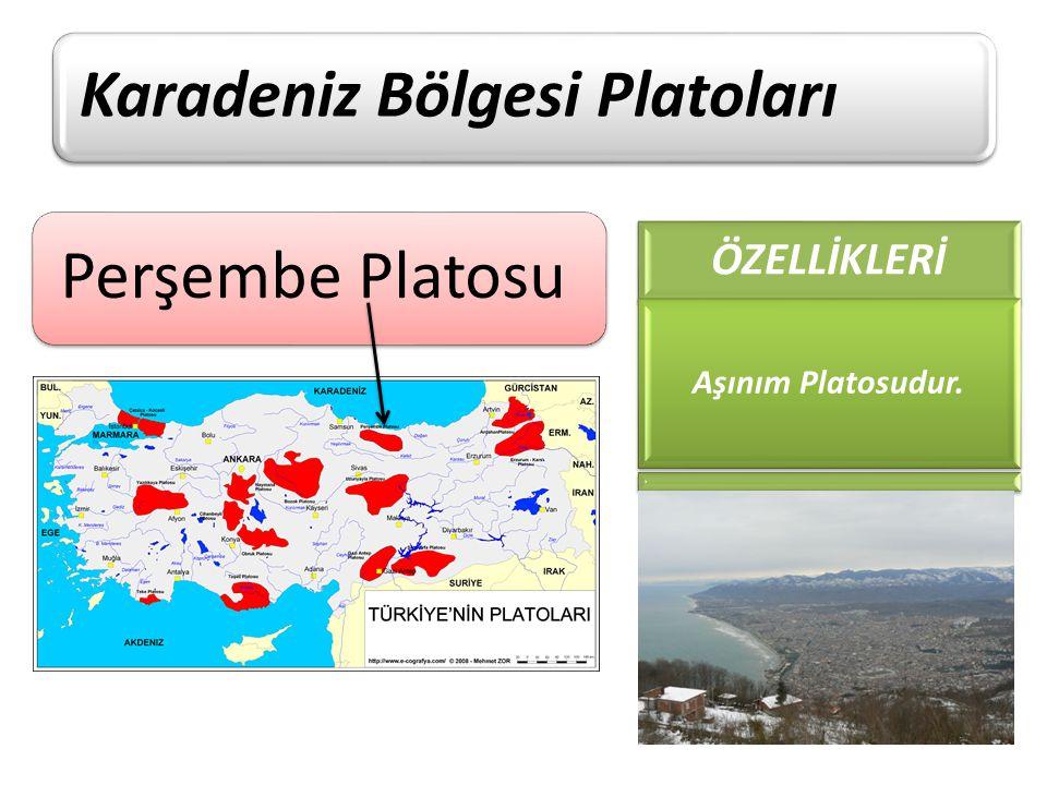 Perşembe Platosu Karadeniz Bölgesi Platoları ÖZELLİKLERİ