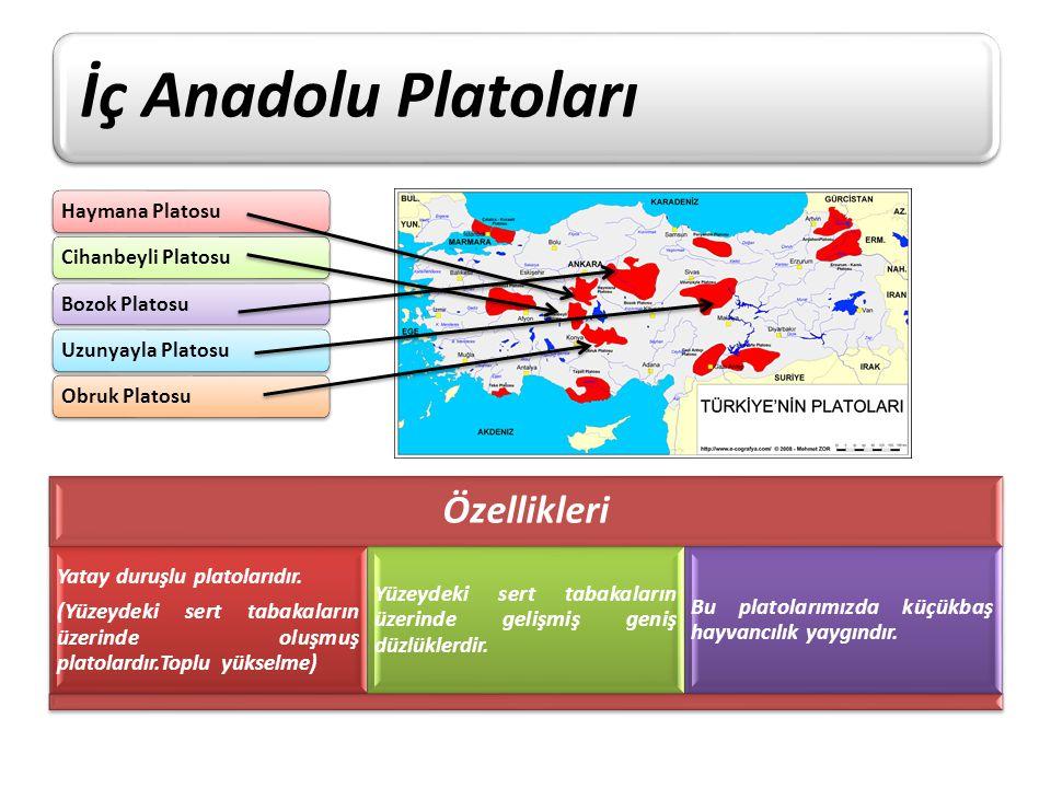 İç Anadolu Platoları Özellikleri Yatay duruşlu platolarıdır.