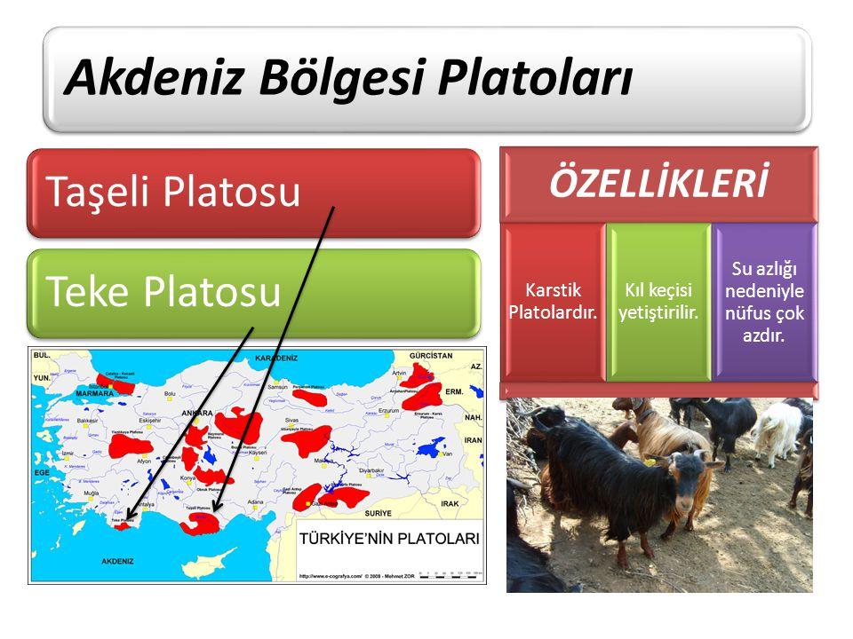 Akdeniz Bölgesi Platoları
