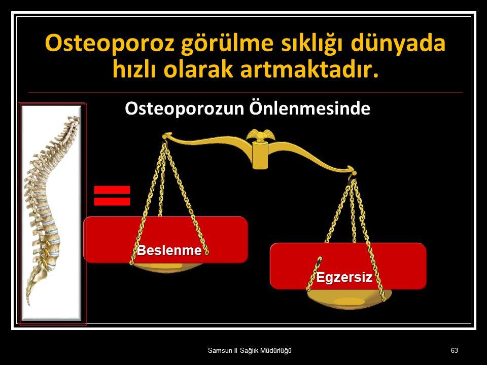Osteoporozun Önlenmesinde