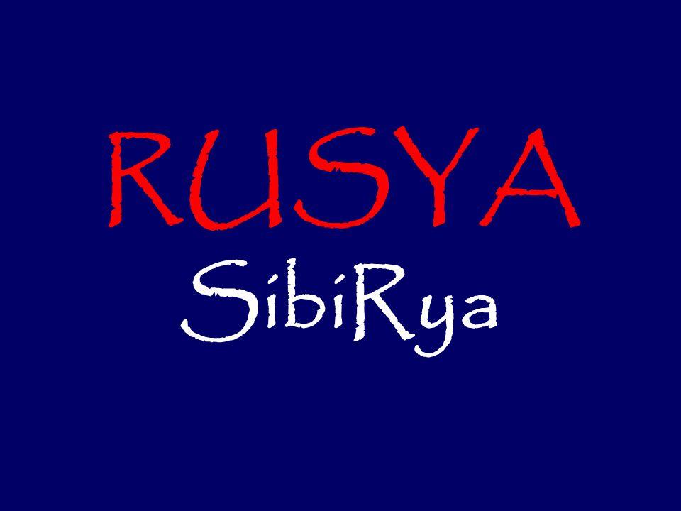RUSYA SibiRya 1
