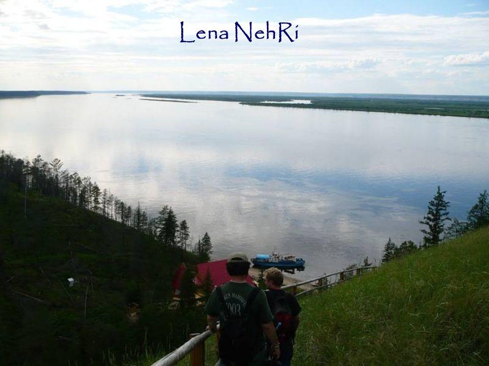 Lena NehRi 13