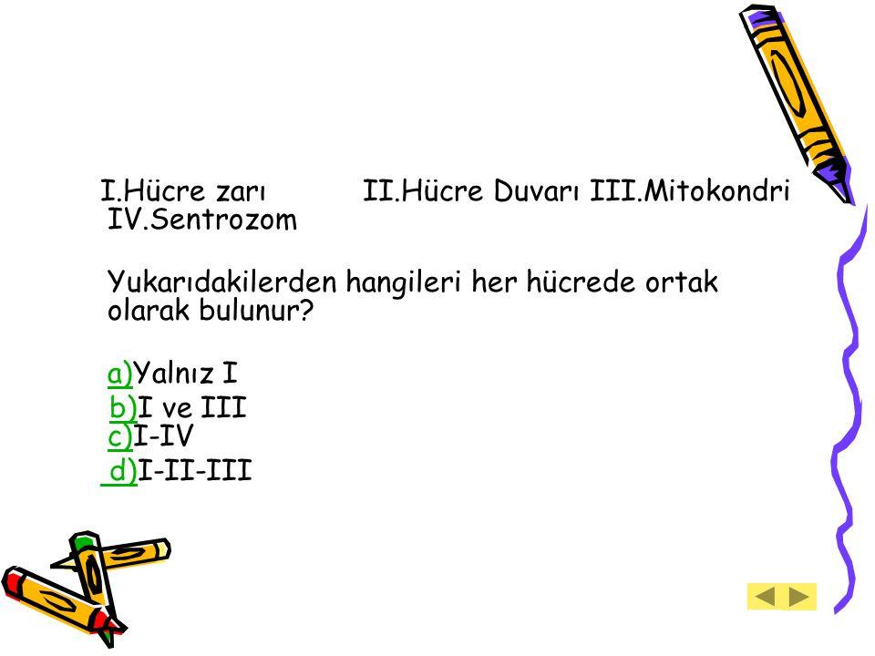I.Hücre zarı II.Hücre Duvarı III.Mitokondri IV.Sentrozom