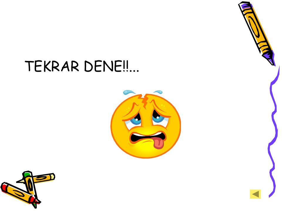 TEKRAR DENE!!...