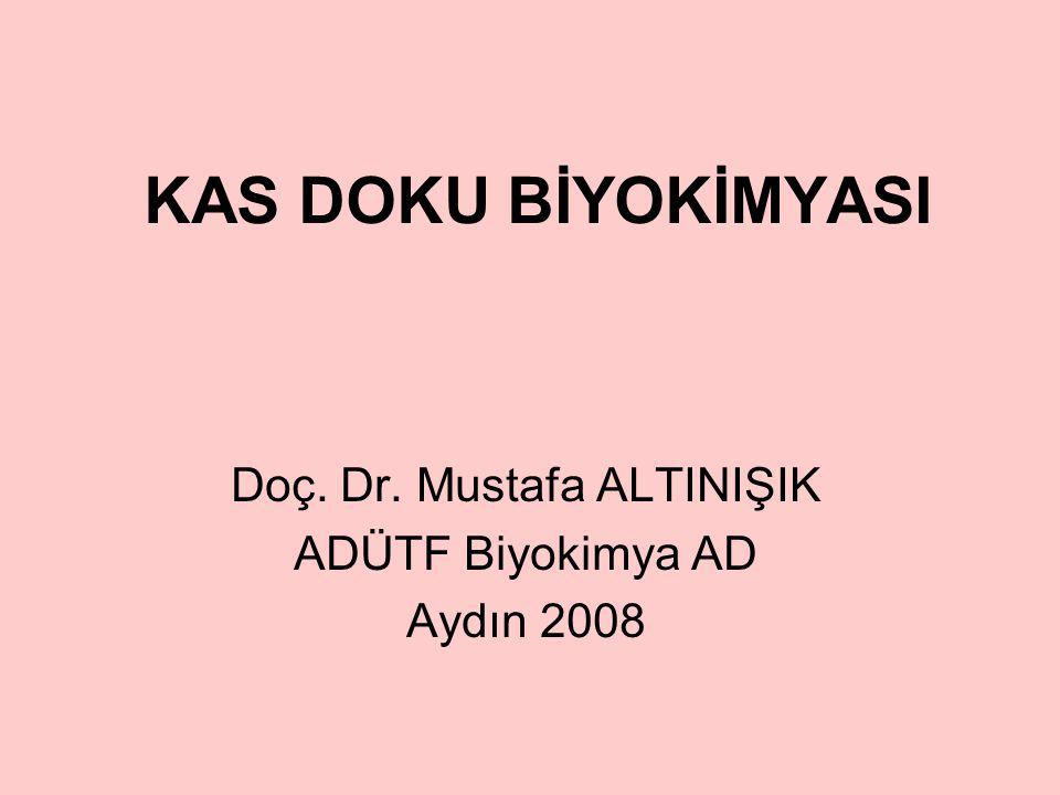 Doç. Dr. Mustafa ALTINIŞIK ADÜTF Biyokimya AD Aydın 2008