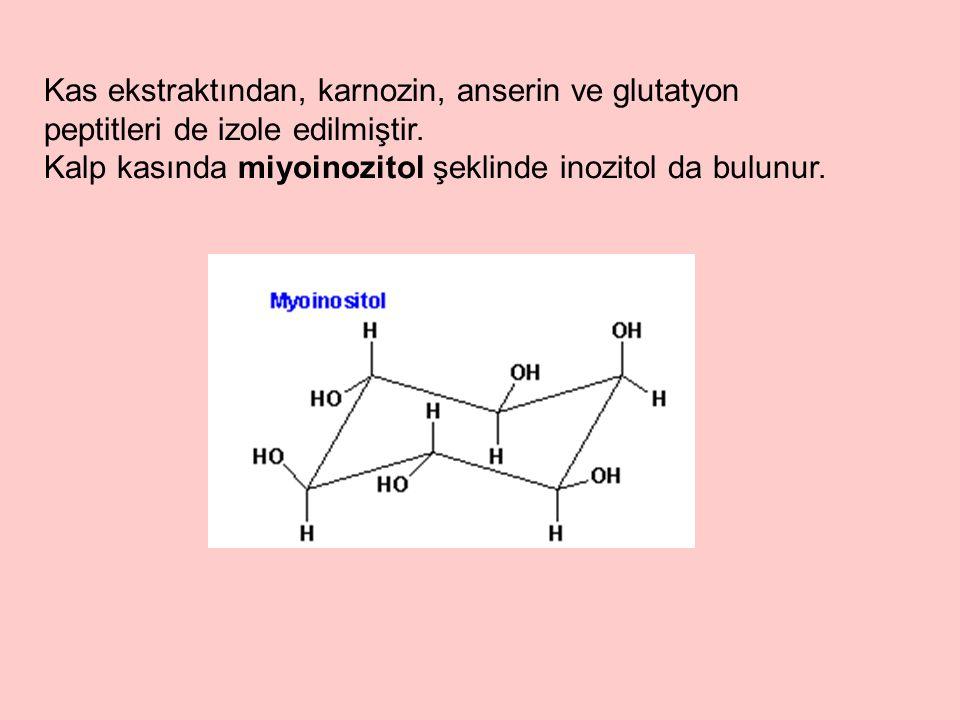 Kas ekstraktından, karnozin, anserin ve glutatyon peptitleri de izole edilmiştir.