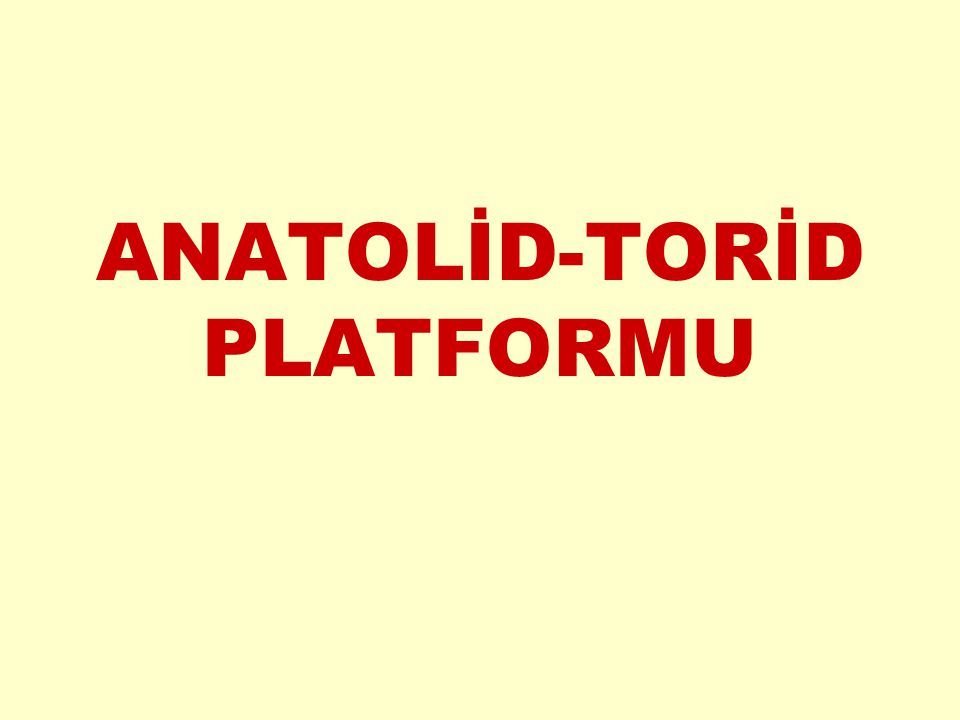 ANATOLİD-TORİD PLATFORMU