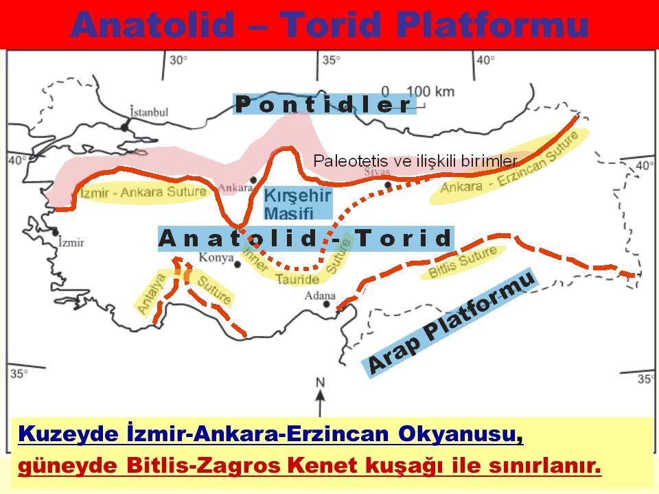 Anatolid – Torid Platformu