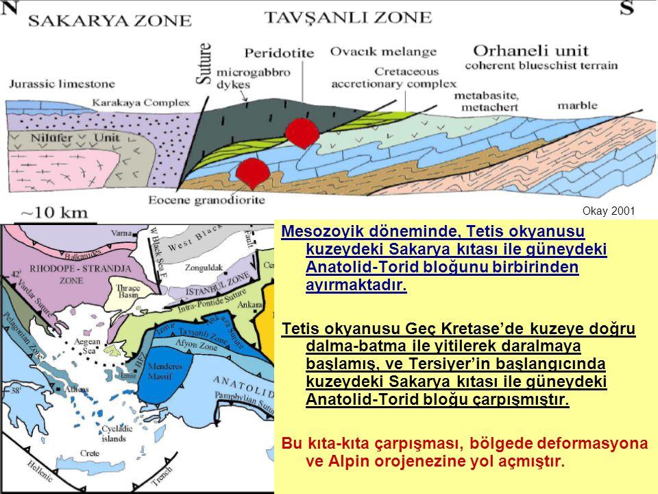 Okay 2001 Mesozoyik döneminde, Tetis okyanusu kuzeydeki Sakarya kıtası ile güneydeki Anatolid-Torid bloğunu birbirinden ayırmaktadır.