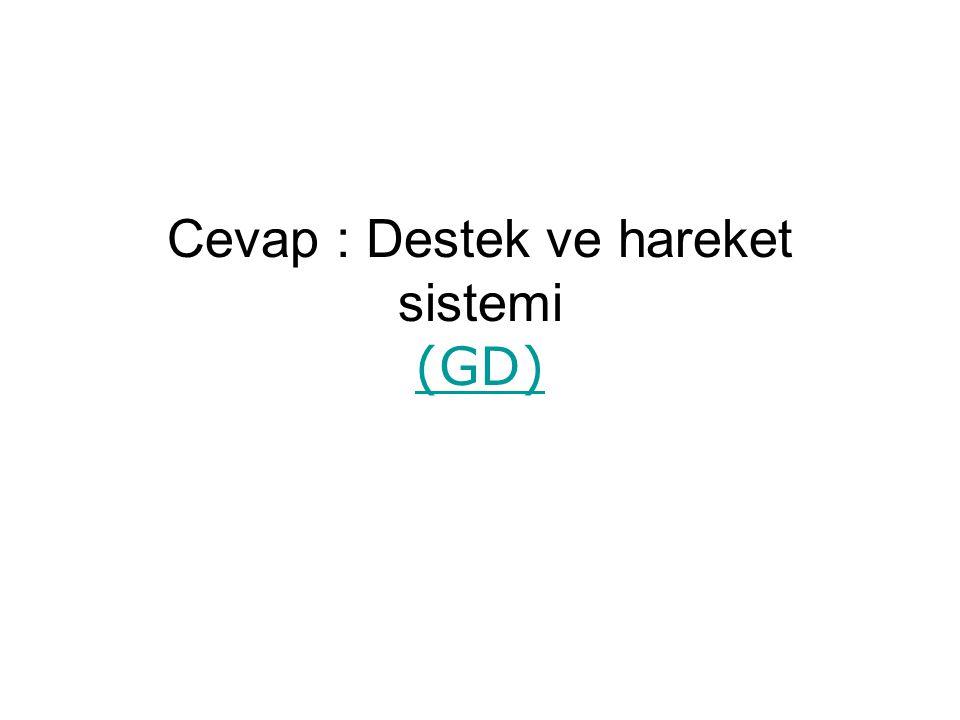 Cevap : Destek ve hareket sistemi (GD)