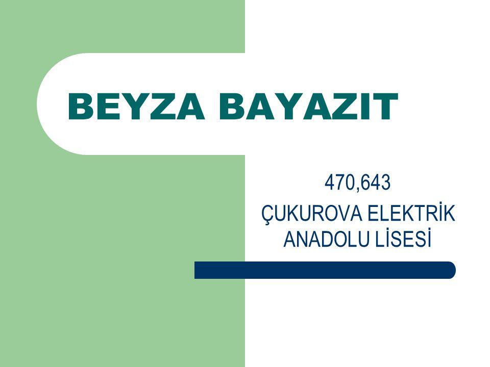 470,643 ÇUKUROVA ELEKTRİK ANADOLU LİSESİ
