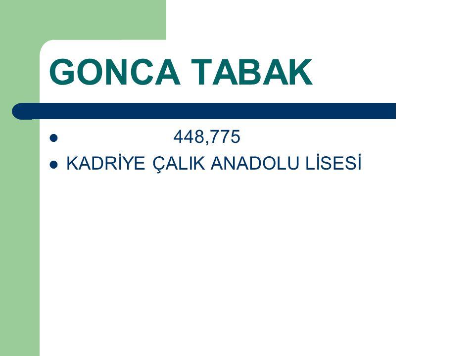 GONCA TABAK 448,775 KADRİYE ÇALIK ANADOLU LİSESİ