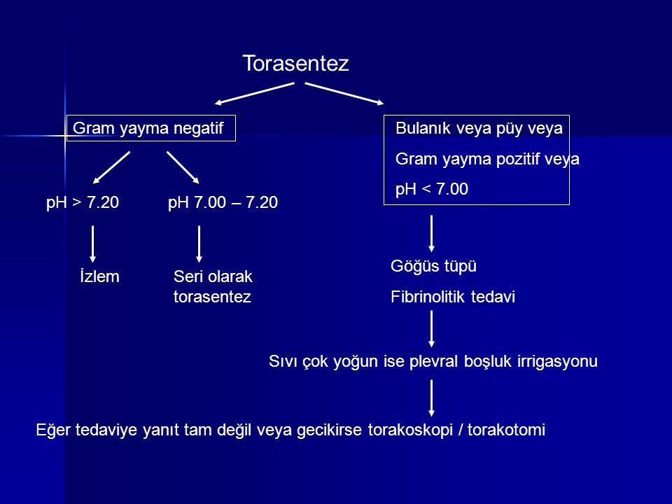 Torasentez Gram yayma negatif Bulanık veya püy veya