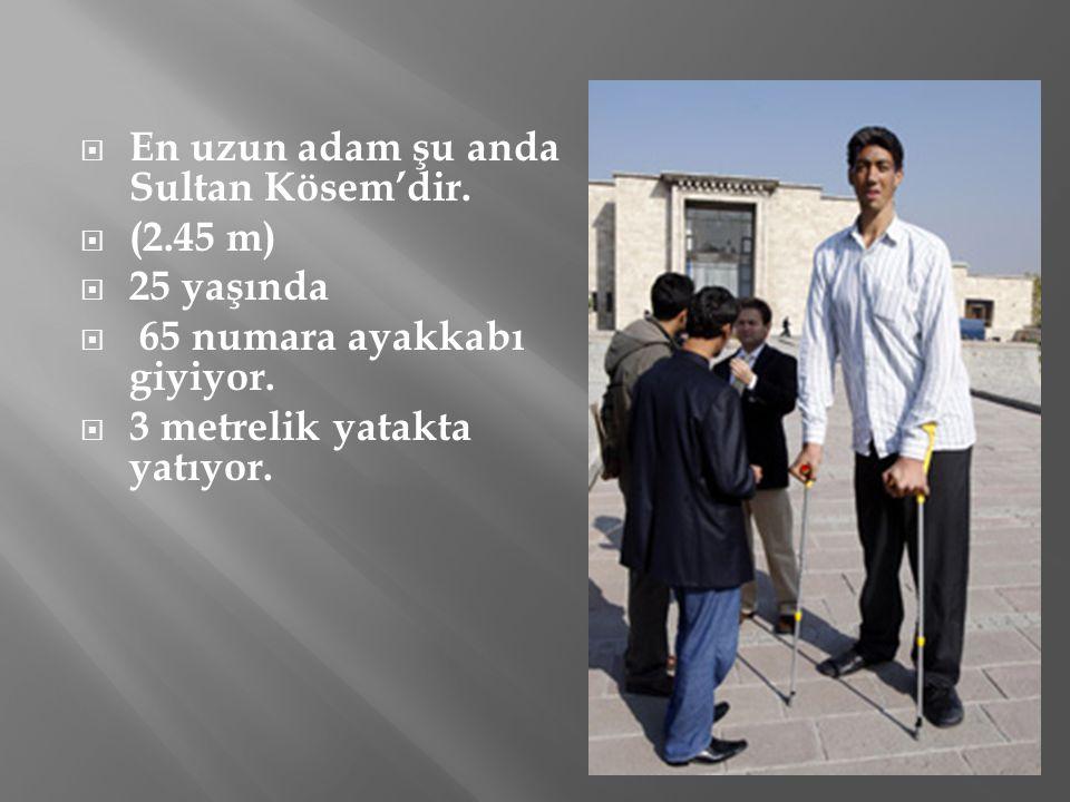 En uzun adam şu anda Sultan Kösem'dir.