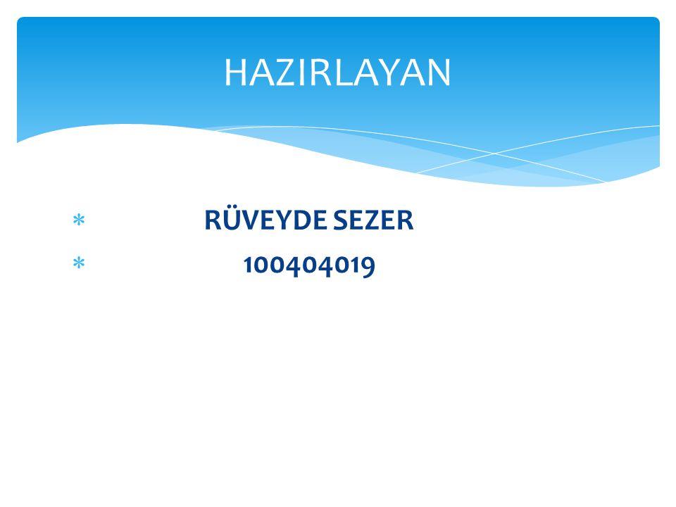 HAZIRLAYAN RÜVEYDE SEZER 100404019