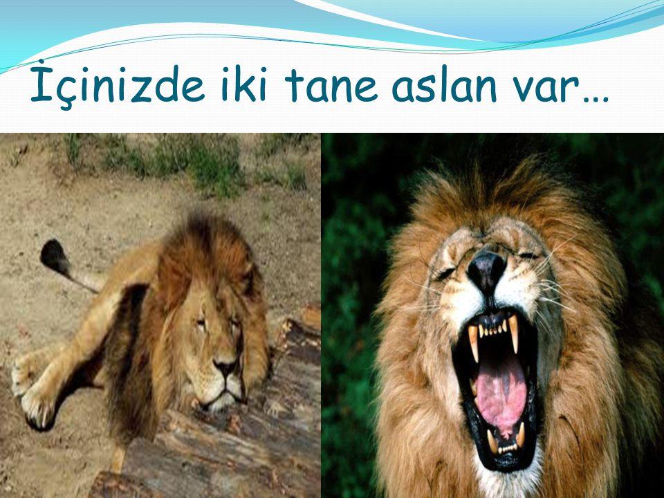 İçinizde iki tane aslan var…