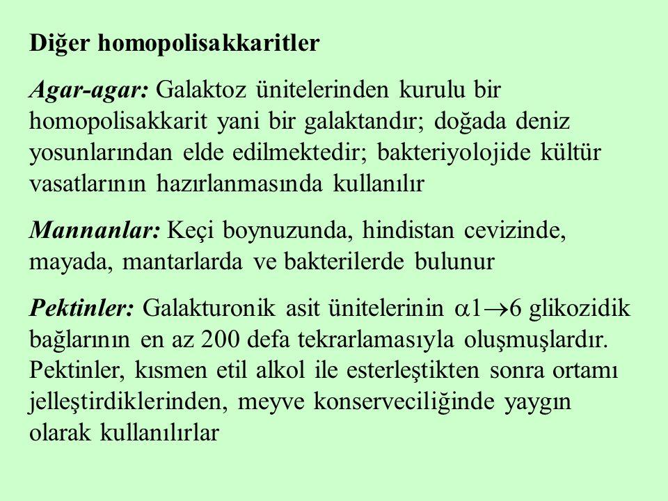 Diğer homopolisakkaritler