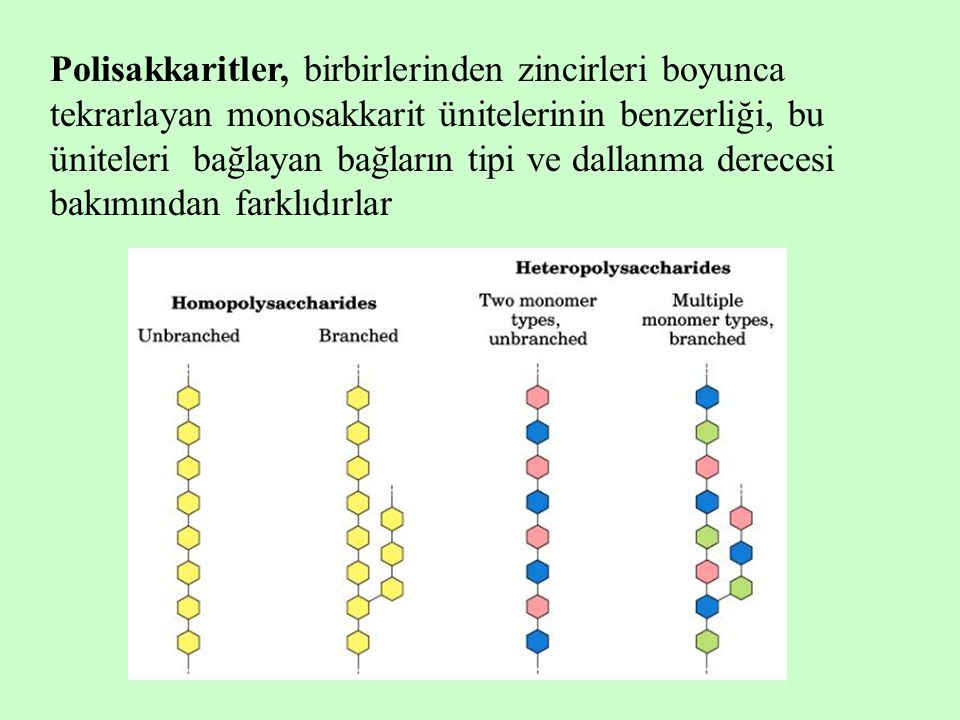 Polisakkaritler, birbirlerinden zincirleri boyunca tekrarlayan monosakkarit ünitelerinin benzerliği, bu üniteleri bağlayan bağların tipi ve dallanma derecesi bakımından farklıdırlar