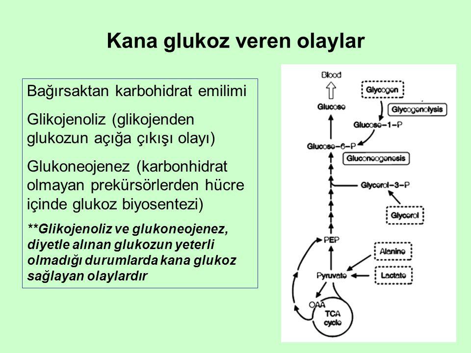 Kana glukoz veren olaylar
