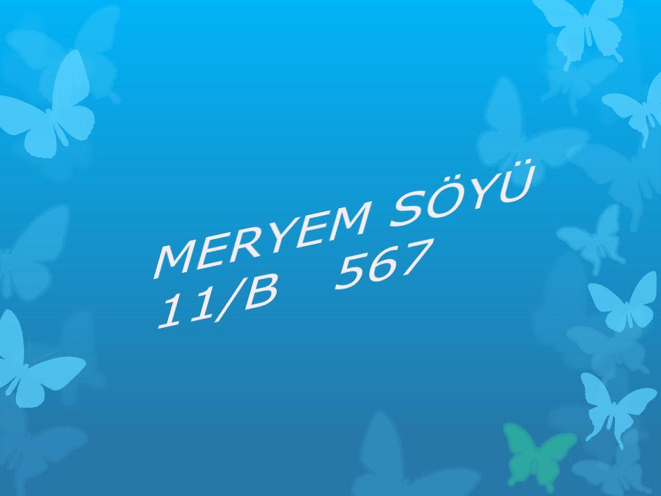 MERYEM SÖYÜ 11/B 567