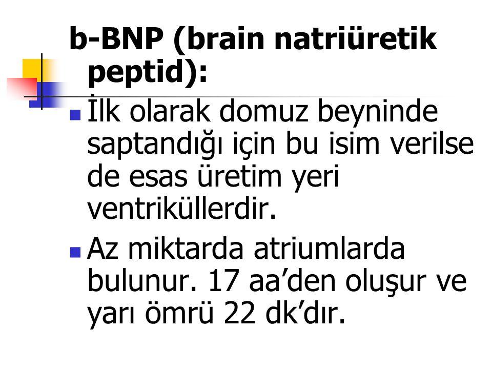 b-BNP (brain natriüretik peptid):