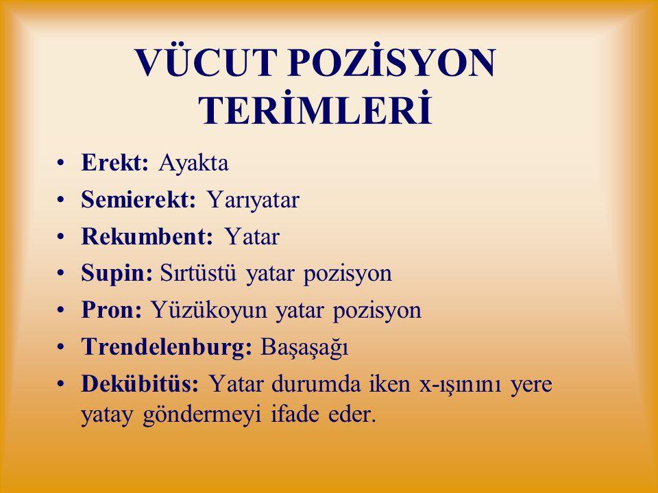VÜCUT POZİSYON TERİMLERİ