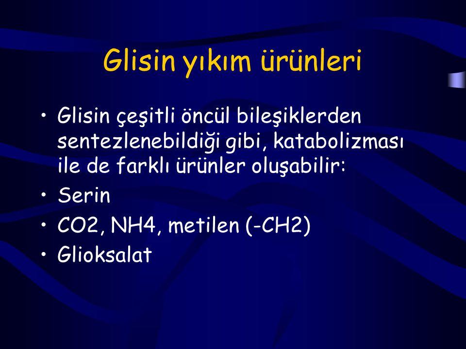 Glisin yıkım ürünleri Glisin çeşitli öncül bileşiklerden sentezlenebildiği gibi, katabolizması ile de farklı ürünler oluşabilir: