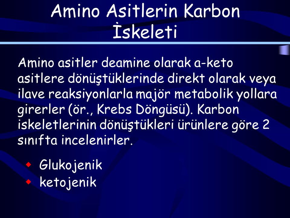 Amino Asitlerin Karbon İskeleti