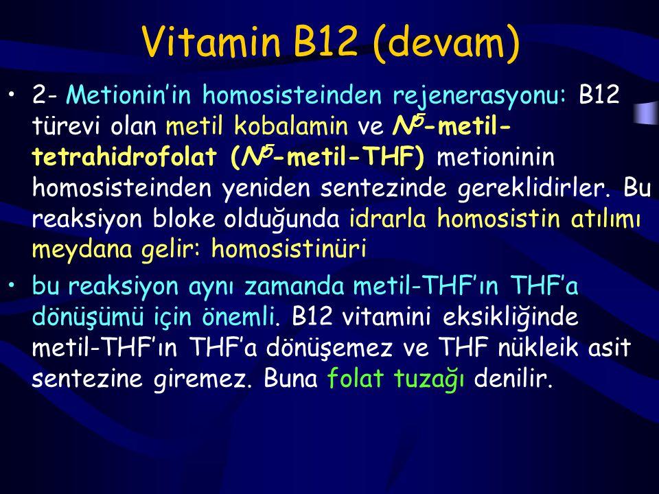Vitamin B12 (devam)