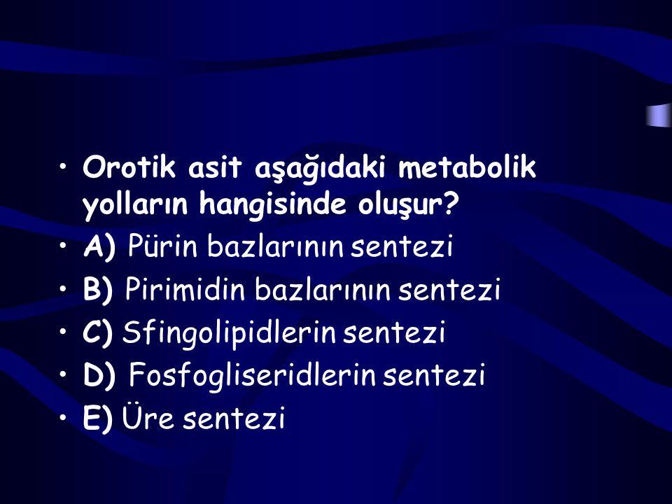 Orotik asit aşağıdaki metabolik yolların hangisinde oluşur
