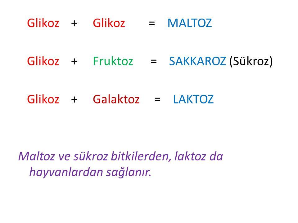 Glikoz + Glikoz = MALTOZ Glikoz + Fruktoz = SAKKAROZ (Sükroz) Glikoz + Galaktoz = LAKTOZ Maltoz ve sükroz bitkilerden, laktoz da hayvanlardan sağlanır.