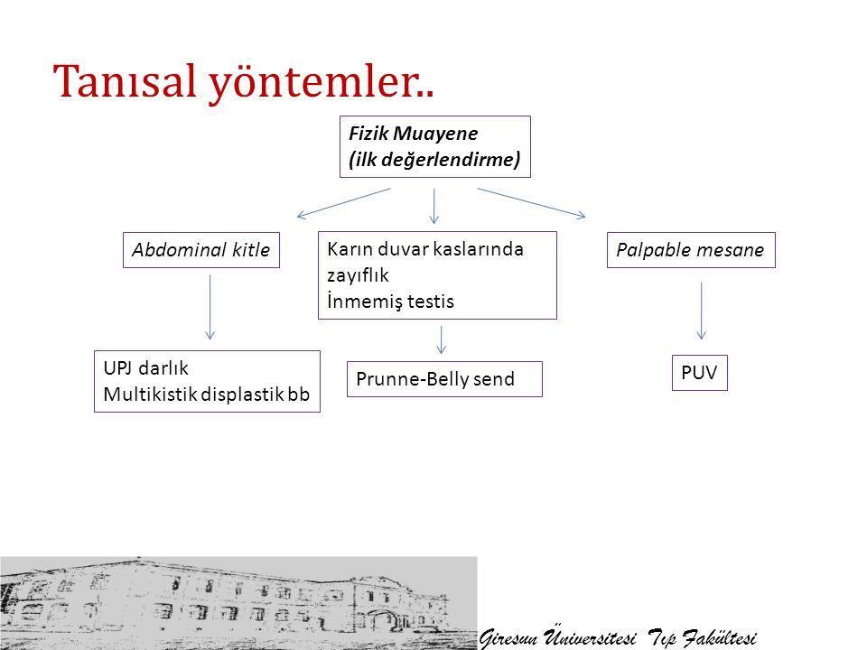 Tanısal yöntemler.. Giresun Üniversitesi Tıp Fakültesi Fizik Muayene