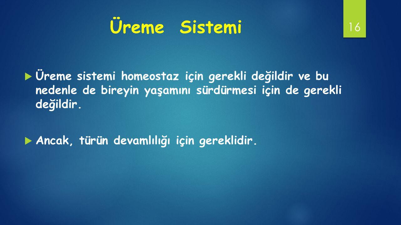 Üreme Sistemi Üreme sistemi homeostaz için gerekli değildir ve bu nedenle de bireyin yaşamını sürdürmesi için de gerekli değildir.