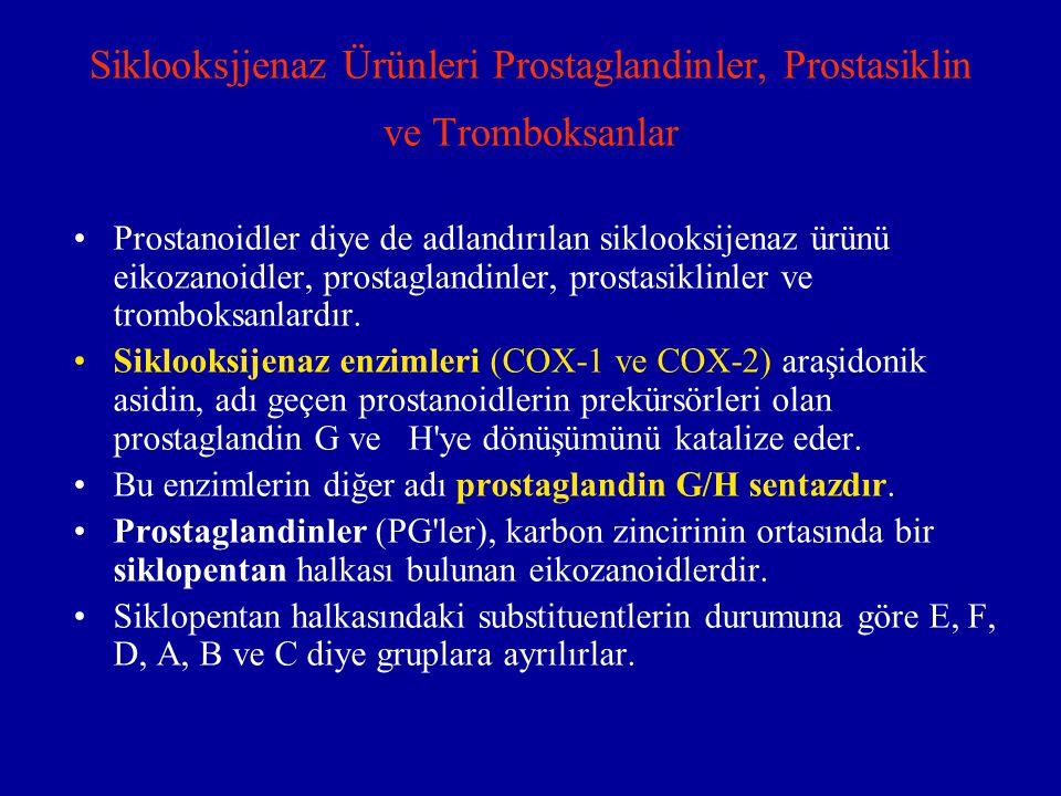 Siklooksjjenaz Ürünleri Prostaglandinler, Prostasiklin ve Tromboksanlar