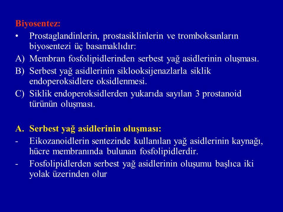 Biyosentez: Prostaglandinlerin, prostasiklinlerin ve tromboksanların biyosentezi üç basamaklıdır: